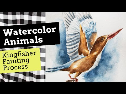 Watercolor Animals Painting Process: Kingfisher