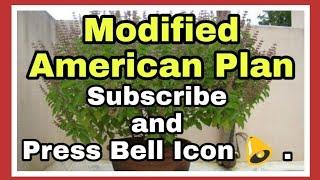 Modified American Plan information in Hotel industry info by kapil Talreja