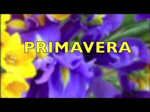 PRIMAVERA MARINA REI