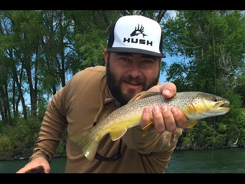 FLY FISHING FOR BIG BROWNS ON THE SOUTH FORK