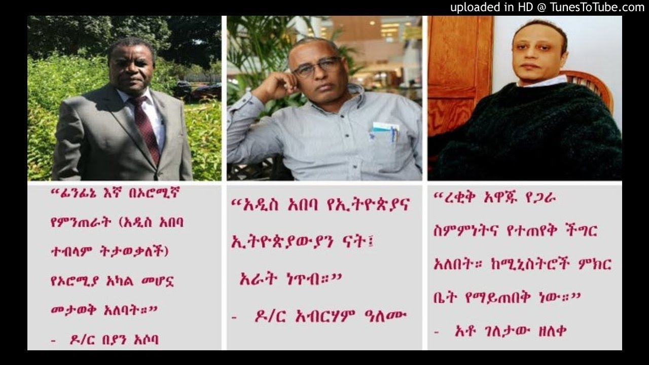 Panel discussion with dr beyan asoba dr abreham alemu and geletaw zeleke pt 1 sbs amharic