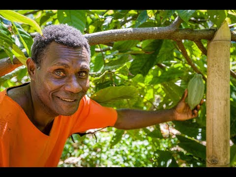 World Vision-trained farmer's cocoa beans voted in top 50 in the world