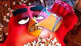 ANGRY BIRDS 2 quotLet39s Drinkquot Clip Animation 2019