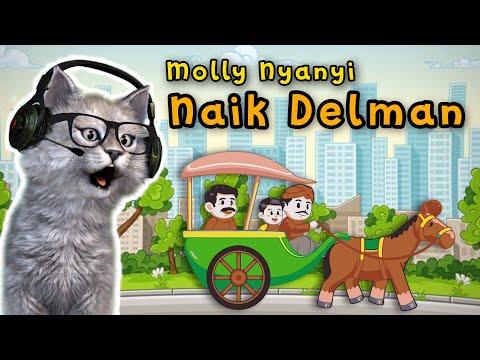 NAIK DELMAN Lagu Anak Anak Lucu ❤️ Molly Si Kucing Lucu