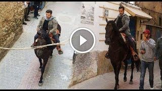 Live देखिये सलमान खान किये घोड़े की सवारी टाइगर जिंदा है के सेट पर || Tiger Jinda Hai Salman Khan