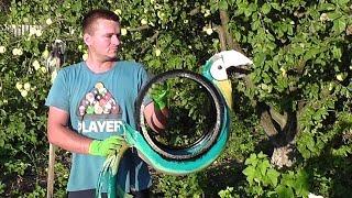ПОПУГАЙ из автомобильной покрышки / Как сделать попугая из покрышки(Как сделать скульптуру из автомобильной покрышки. В этом видео я вам расскажу, как сделать попугая с автомо..., 2014-07-31T18:50:14.000Z)