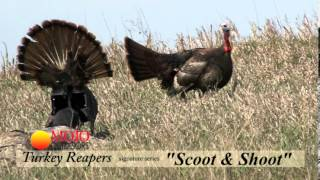 MOJO Scoot and Shoot Turkey Demo