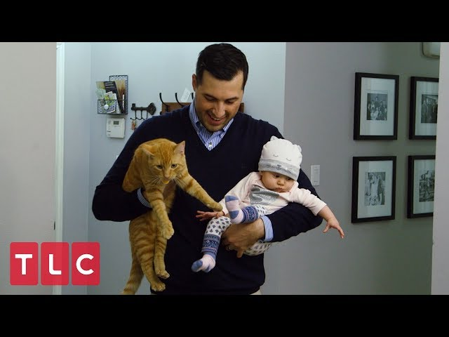 Jeremy and Jinger Got a Cat! | Counting On