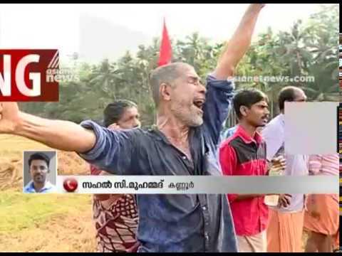 Keezhattur vayalkilikal contest  in lok sabha election 2019