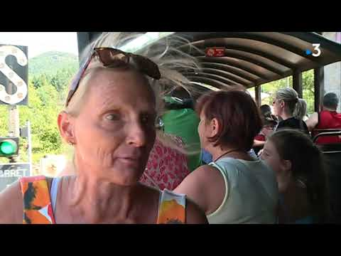 Cévennes : le train à vapeur d'Anduze, un voyage dans le temps - - France 3 Occitanie