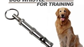 Ultrasonic Whistle For Pet By G H