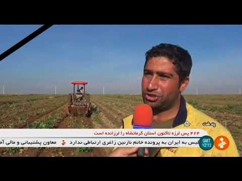 Iran Organic Mechanized Potato harvest, Poldasht county برداشت مكانيزه سيب زميني شهرستان پلدشت ايران