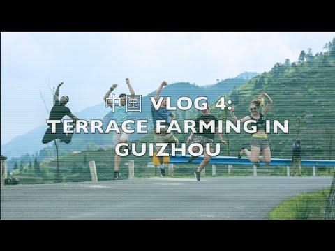 TRAVEL VLOG   中国 VLOG 4   Minority villages and terrace farming in Guizhou