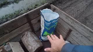 Последняя подкормка подсолнечника. Агро-канал