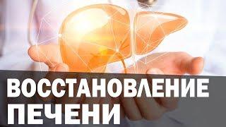 Повышенная ПИТТА и болезни печени. Аюрведа Здесь