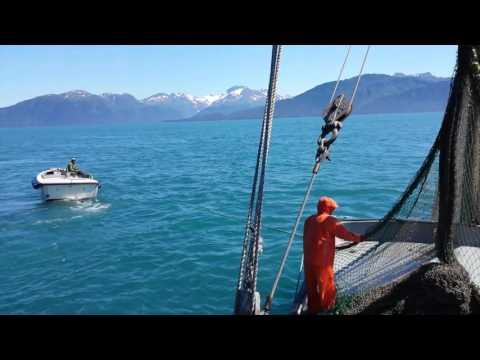 Alaska Salmon Fishing for Dummies