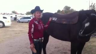 Jane Melby Barrel Racer with Diamond Wool Pad.
