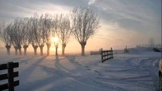 Winter Splendor/Martha Mier