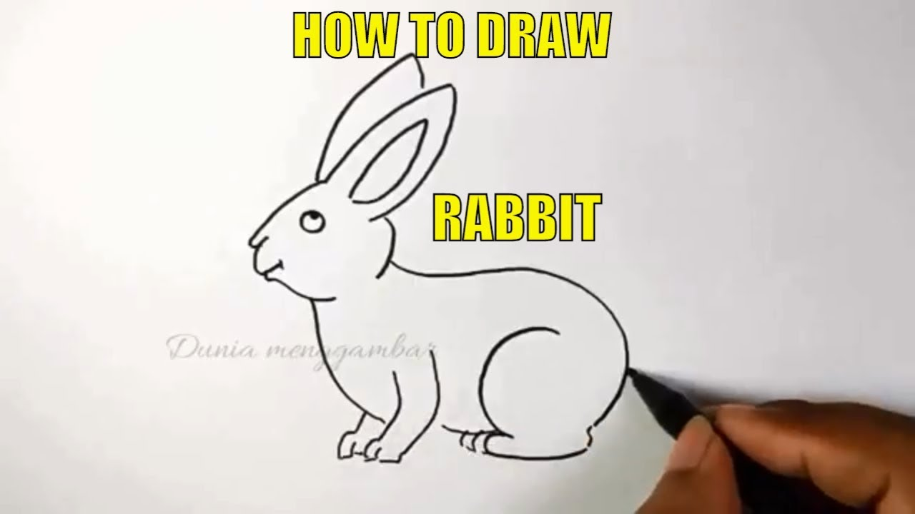 How To Draw A Rabbit Is Very Easy