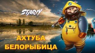 Русская Рыбалка 4 ⏪ АХТУБА БЕЛОРЫБИЦА ⏩ STARIY (РР4,RF4) Как ловить Живца