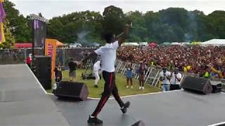 Kuami Eugene live at Party In The Park 2019