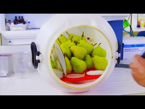 Stop food wastage - How to get your fruit to last longer