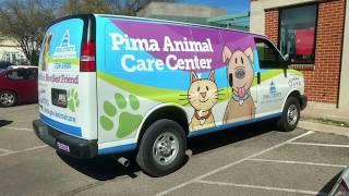 Arizona Animal Shelter Dog Finds New Home