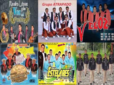 Los Mejores Grupos de Oaxaca MIX OAXACA - ESTILO NORTEÑO Y TIERRA CALIENTE - Canciones Romanticas