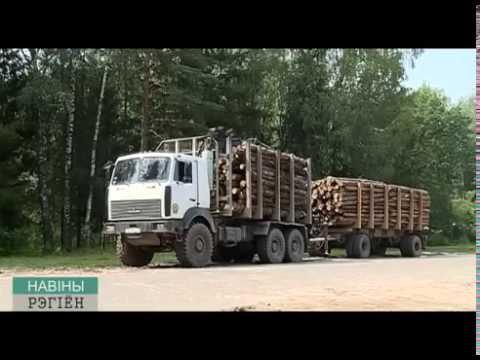 акт об оказании услуг по распиловке леса кругляка образец