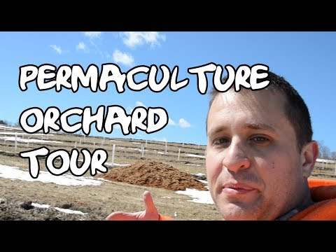 A Spring Orchard Tour