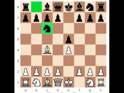 how to checkmate in 4 move 4 move checkmate youtube