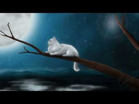 Alone In The Darkness (Sad Music Box Melody - Original)