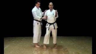 Sanchin Kata Bunkai Clip from the IWKA DVD Series