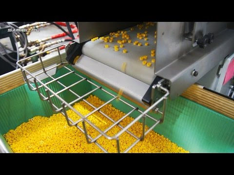 Sariel visits LEGO: inside LEGO molding factory, LEGO vault & LEGO Ideas House