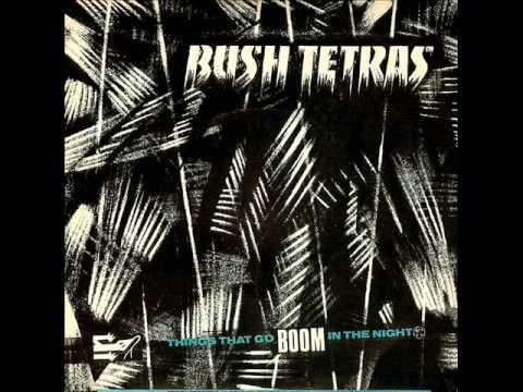 Bush Tetras - Things That Go Boom In The Night