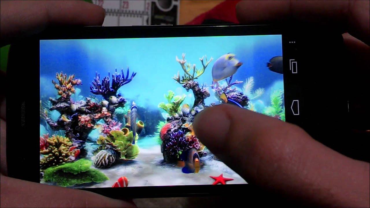 Impresionante fondo animado acuario 3d super realista for Protectores animados