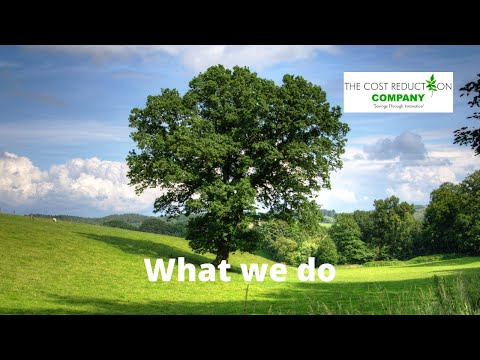 The Cost Reduction Company - What we do