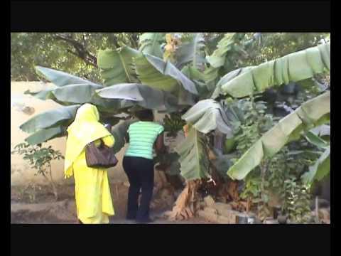Visages de Femmes - 8 mars 2013 - Cultura Dakar et Trias Culture