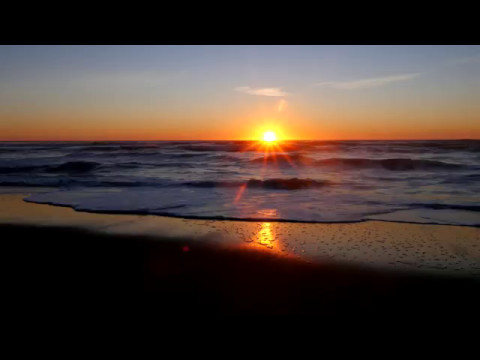 Landing Page Monkey Video Background - Sunset Beach Waves