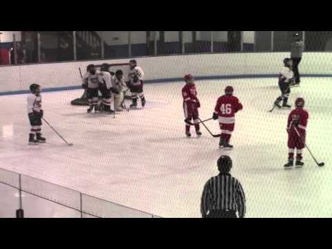 Full Game Red Wings at MCYH Jan 9 2016