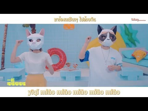 xue-mao-jiao-学猫叫---小潘潘-&-小峰峰-mv-#tiktok-(pinyin-lyric/thaisub)