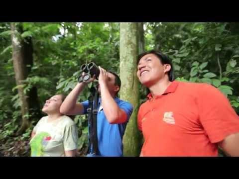 Napo Wildlife Center - The perfect amazon rainforest trip.