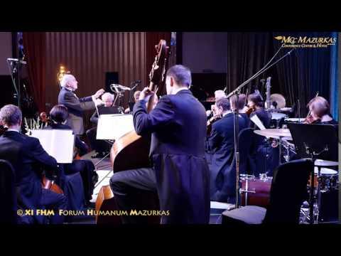 """XI FHM-W.A.Mozart-""""Eine kleine Nach"""