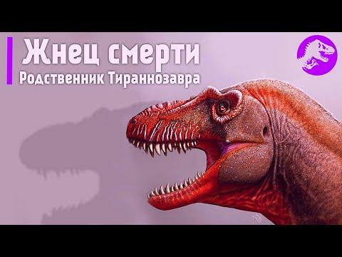 Ученые обнаружили новый хищный вид динозавров