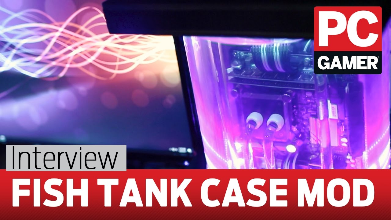 Fish tank kings a snorkelers dream - The Sea Drive Is A Gaming Pc Built In A Fish Tank