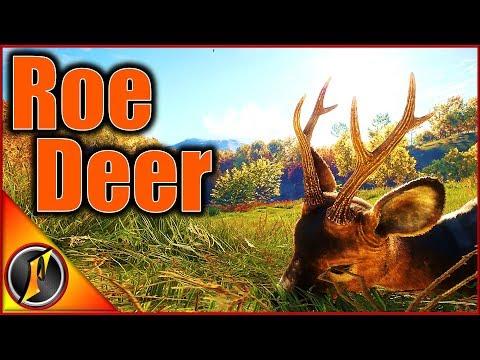 Legacy Diamond Roe Deer Hunt