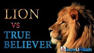 Lion vs True Believer ᴴᴰ | True Story