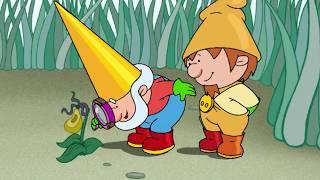 Into The Wild - Gordon The Garden Gnome Full Episode - Tiny Fun HD Children's Animation
