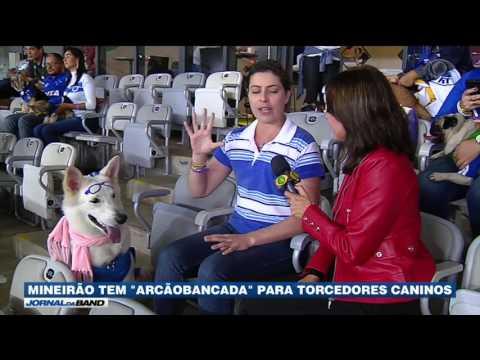 Mineirão reserva arquibancada para torcedores e seus cães