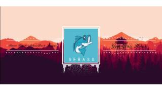 Gym Class Heroes - Stereo Hearts (SebassDuck Remix) [Free Download]